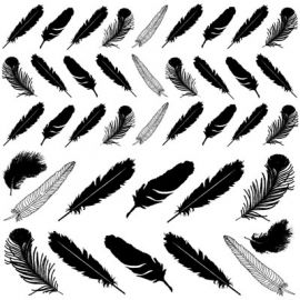 Decal Magic - Feathers - Gold