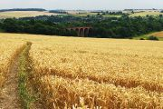 News - Ecolution Darenth Valley Charity Walk - The bridge