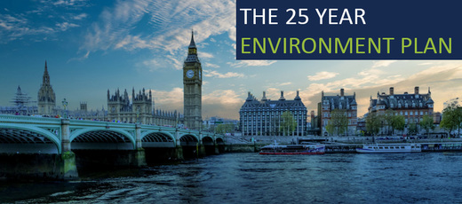 Theresa May – A Green Future: 25-Year Plan to Improve the Environment