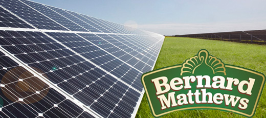 Bernard Matthews to have 10,000 solar panels installed on farms