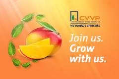 CVVP SM side banner Eurofruit (October 2020)