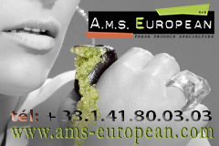 AMS European (no.4 Sm Side banner) EF Web