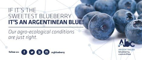 Argentinean Blueberry Committee