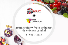 Soloberry pos.4 240x160 EUROFRUIT website