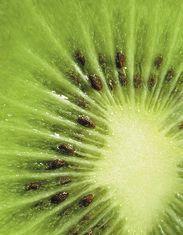 Italian kiwi drop forecast