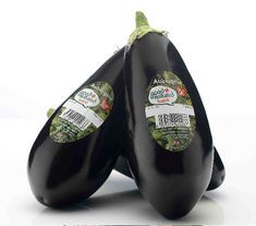 Good Natured aubergines launched