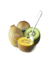 Zespri and T&G 'working well together'