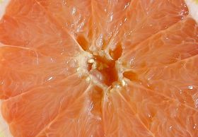 Grant great for grapefruit growers