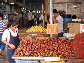 Fruit demand brings logistics opportunities