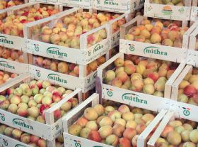 Spanish stonefruit growers slam supermarkets
