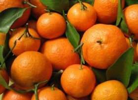 RSA citrus sets sail to US