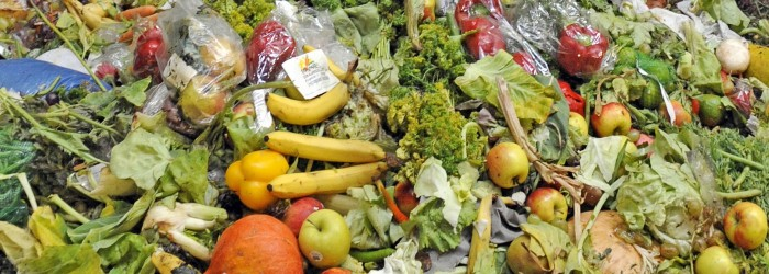 Food waste reaches tipping point