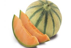 Soldive starts Senegal melon harvest