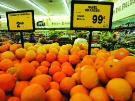Bumper California navel deal predicted
