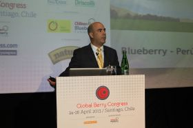 Peru emerging as key berry source