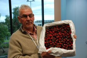 Valleyfresh launches new export company