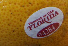 USDA expects Florida decrease