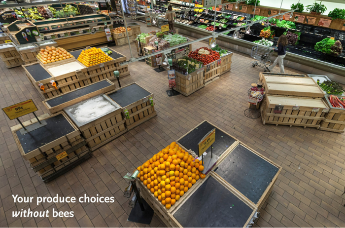 US Whole Foods produce choices without bees