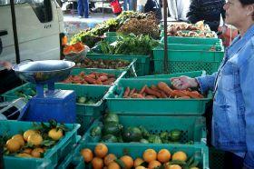 Malta fresh produce trade rebounds