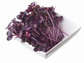 Flowerdale Farm launches microgreen range