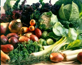 Organic food sales on the rise