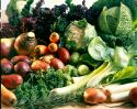 Veg suppliers gear up for British season