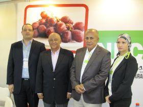Egyptian firms target Asia