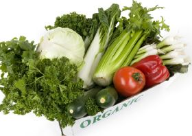 Healthy outlook for organic food