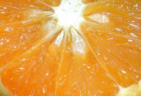 Nigeria looks to boost citrus exports