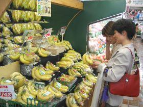 Japan accepts disease-resistant bananas