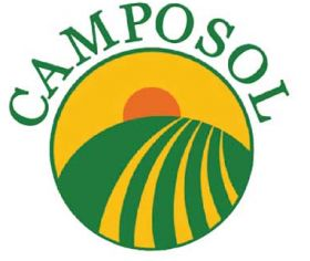 Camposol sees Q1 sales surge