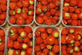 Berry crush: prices fall after compressed market