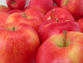 IG brings Artisan Organics apples to India