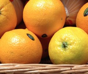 Citrus deal in flux as supply lines shift
