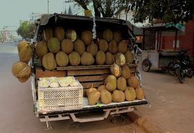 Myanmar to build first wholesale markets