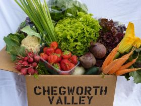 Soil Association in organic marketing push