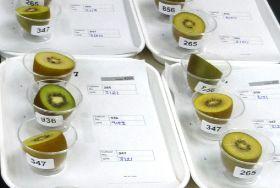 Zespri developing peelable kiwifruit