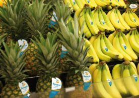 Dole in talks with Banacol