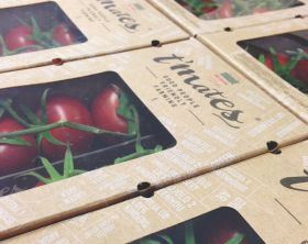 Del Campo offers t'mates tomatoes