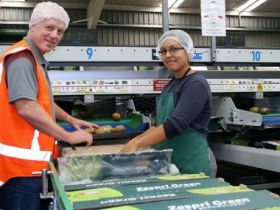 EastPack targets NZ$5m profit in 2014