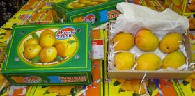 Indian mango audit 'could lift ban'