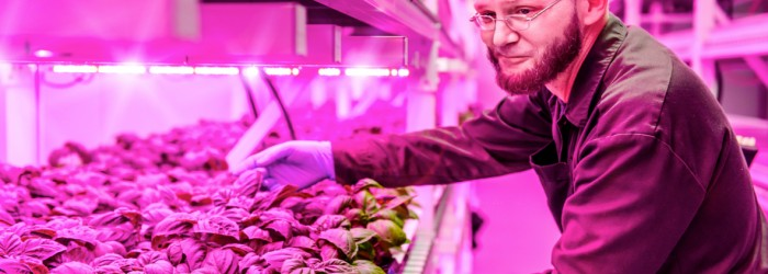 GSF builds Chicago vertical farm