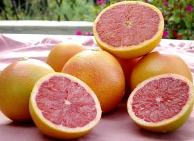 South African citrus deal defies odds