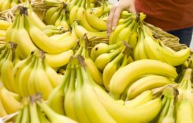 TR4 hits second banana farm