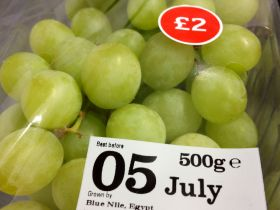 "Egyptian grape campaign ""very good"""