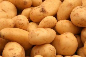 South Korea shifts toward imported potato