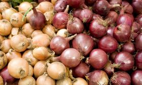Ban causes Indian onion shortage