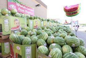 Fruit display world record broken