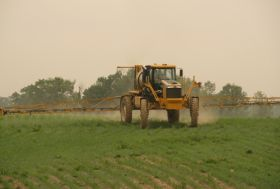 "Pesticides ""crucial"" to produce future"