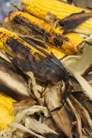 Surge in Nando's popularity boosts UK sweetcorn supply